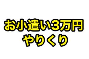 お小遣い3万円のやりくりを節約と在宅収入を極めたフリーターが紹介